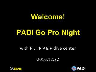 GoPro Night_Jap_20161222forFDC.jpg